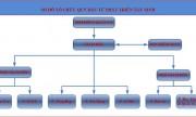 Cơ cấu tổ chức Quỹ Đầu tư Phát triển Tây Ninh